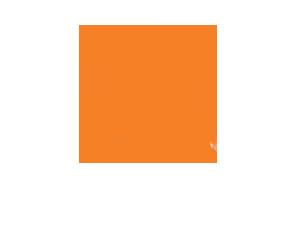 Stayhold™